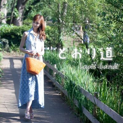 http://5roku.com/timepage/torimichi
