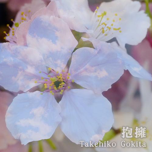 五木田岳彦『抱擁』